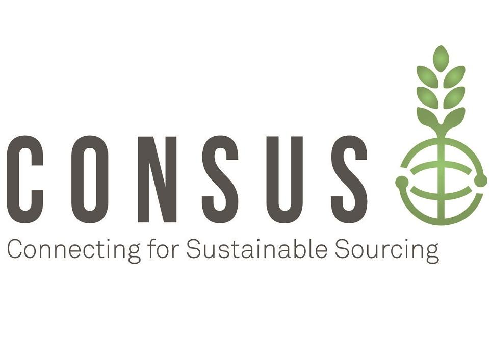 the logo of the CONSUS project