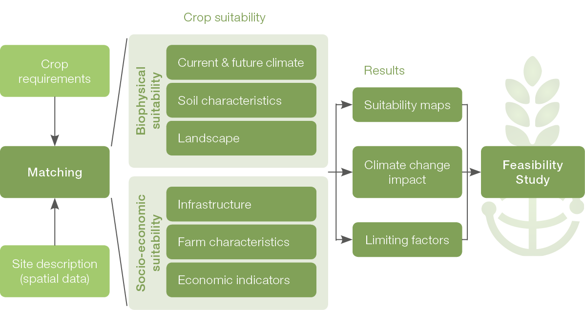 The different CONSUS Modules from Crop suitability to feasability studies